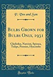 Amazon / Forgotten Books: Bulbs Grown for Bulbs Only, 1931 Gladiolus, Narcissi, Spiraea, Tulips, Peonies, Hyacinths Classic Reprint (P Vos and Son)
