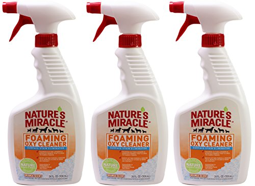 Nature's Miracle Foaming Oxy Cleaner Stain Eliminator Orange Scent (Pack of 3) by Nature's Miracle