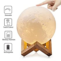 LOL Lighting Full Moon Lamp