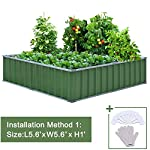 """KING BIRD Extra-Thick 2-Ply Reinforced Card Frame Raised Garden Bed Galvanized Steel Metal Planter Kit Box Green 68""""x 36""""x 12"""" with 8pcs T-Types Tag & 2 Pairs of Gloves (Grey) 22 【Extra-thick 2-Ply Reinforcement】 Double card frames on the two sides of sheet make the garden bed more durably and stably; never worry about its distorted or collapsed and it presents much more beautiful design; 【Advanced Installation Design】 Patent of this new installation design gives you a superbly convenient installation procedure; you just need piece together the card frame and sheet; a firm garden bed will present to you; 【Multilayer Galvanized Paint】 Upgraded multilayer galvanized paint efficiently prevents rust and continues to beauty; also never worry about that pest and rain damage the wood garden bed; galvanized steel garden bed provides a lasting use and no discoloration;"""