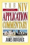 Jonah, Nahum, Habakkuk, Zephaniah (The NIV Application Commentary)