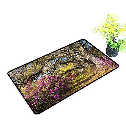 Entrance Door Mat Large Flowers in Charleston South
