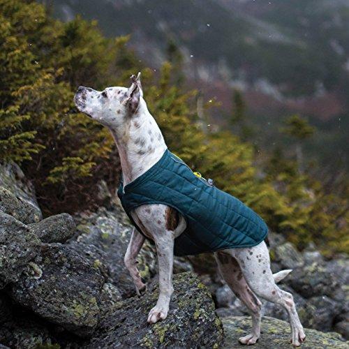 Image of Kurgo Loft Jacket, Reversible Dog Coat, Dog Coat for Cold Weather, Water-Resistant Dog Jacket with Reflective Trim, Ink Blue, X-Large