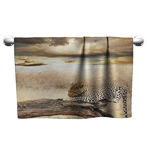 (xixiBO Soft Towel W35 x L12 Safari,Leopard Resting Dramatic Cloudy Sky Africa Safari Wild Cats Nature Picture, Beige and Brown Softness and Tear Strength)
