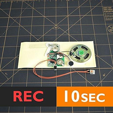 bigDAWGS greetings Módulo de Voz 10 segundos grabable para ...