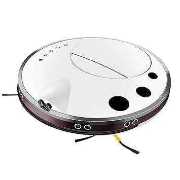 DPPAN Robot Aspirador Iimpieza, Robot Aspirador Fregona para Pelo de Mascotas Punto de interrupción de