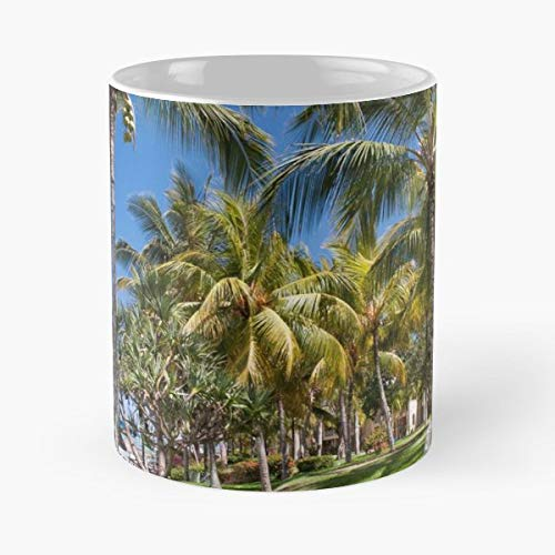 Jenny Rainbow Fine Art Photography Mauritius Beach Ocean - Funny Sophisticated Design Great Gifts -11 Oz Coffee Mug.the Best Gift For Holidays.