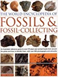 World Encyclopedia of Fossils & Fossil-Collecting: An illustrated reference to over 400 plant and animal fossils from around the globe and how to identify them, with over 1,000 photographs and artworks