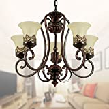 Cheap 5-Light Black Wrought Iron Chandelier with Glass Shades (D-6318-5S)