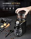 SHARDOR Conical Burr Coffee Grinder, Electric