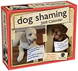 img - for Dog Shaming 2019 Day-to-Day Calendar book / textbook / text book