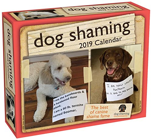 Dog Shaming 2019 Day-to-Day Calendar