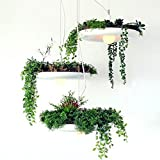 GFFO Nordic 3 flower pots personality pastoral potted plants restaurant coffee pendant chandelier, 22v