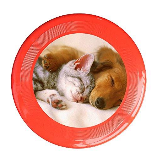Frisbee Dog Puppy Cat Kitten Cute Pet Pets Safe Plastic Frisbee Flying Saucer Flying Disc Sport Disc Fun Flyer Frisbee