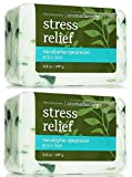 Bath & Body Works Aromatherapy Body Bar Eucalyptus Spearmint 2 Pack