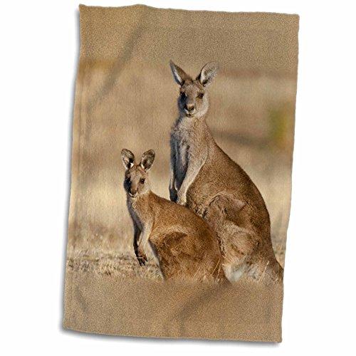 Kangaroo Towel<br>12x18 Towel