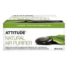 Attitude Natural Air Purifier, Eucalyptus & Lavender 1 ea