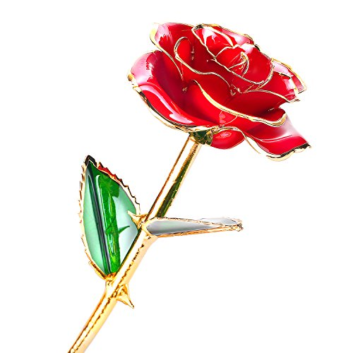 24k Gold Rose Flower with Long Stem Rose Dipped in Gold Gift for Women Girls on Birthday, Valentine's Day, Mother's Day, Christmas (Red) Glass Flower Long Stem