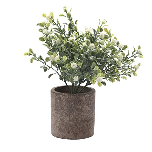 HC STAR Artificial Plant Potted Mini Fake Plant Decorative Lifelike Flower Green Plants - 1103 (Round pot, White) (Pots Goods Flower Home)