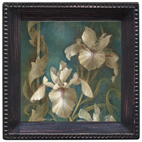 Thirstystone Ambiance Coaster Set, Irises on Teal, Multicolored