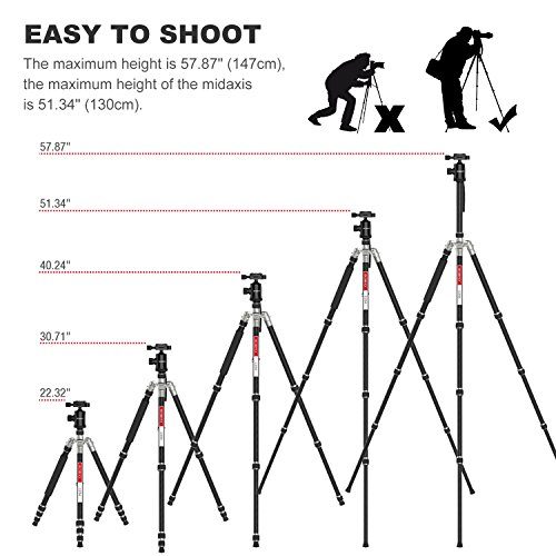 Carbon Fiber Camera Tripod, Beschoi 66'' Compact Travel Tripod Portable Camera Tripod Monopod with Ball Head and Carry Bag for Digital Camera / Camcorder / DSLR / SLR / Video Cameras by Beschoi (Image #2)