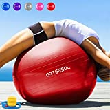 Arteesol Anti-Burst Exercise Ball, Fitness Balance Swiss Ball with Quick Pump 45/55/65/75cm Anti-Slip Yoga Ball Heavy Duty Gym Ball for Physical Therapy, Gym and Home Exercise