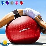 Yoga Balls Review and Comparison