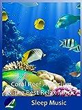 Coral Reef Aquarium & The Best Relax Music - Sleep Music