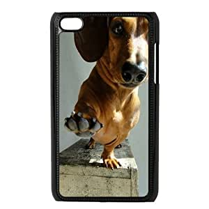 MY LITTLE IDIOT STORE Dog Hard Plastic Back Cover Protection Case for ipod touch 4
