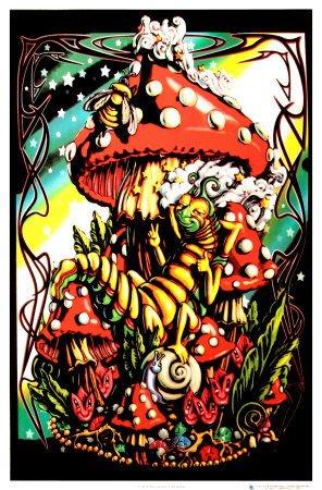 (24x36) Mushroom Caterpillar Fantasy Flocked Blacklight Poster Art Print by Poster Revolution