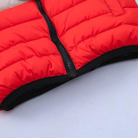 Amazon.com: Chaqueta de invierno para niños, con cremallera ...