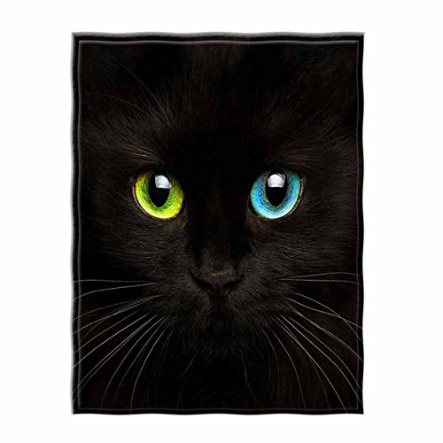 QH 58 x 80 Inch Black Cat Print Super Soft Throw Blanket for Bed Couch Sofa Lightweight Travelling Camping Throw Size for Kids Adults All Season
