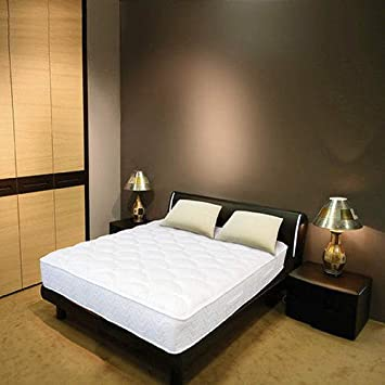 Amazoncom Night Therapy 13Inch Euro Top Spring Mattress Bed