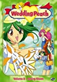 Wedding Peach, Vol. 3: Spring Storm by Section 23