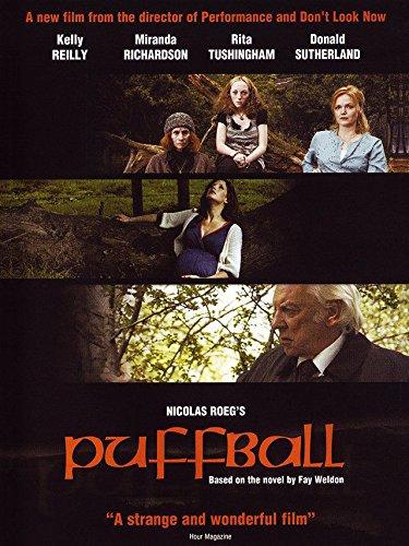 puffball-the-devils-eyeball
