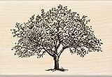 Inkadinkado Spring Blooming Tree Wooden Mounted