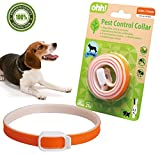 Best Dog Ticks - FOOMEXT Flea and Tick Collar for Cats Review