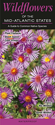 Wildflowers of the Mid-Atlantic States DE, MD, NY, NJ, VA, WV:A Guide to Common Native Species (Virginia Center Commons)