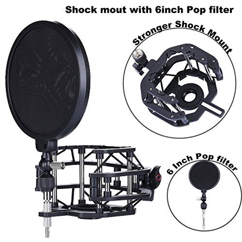 C01 Studio (Microphone Shock Mount with Pop Filter Mic Windscreen Shield for Studio Radio Broadcasting and Recording, Anti Vibration Suspension Metal Mic Mount (6