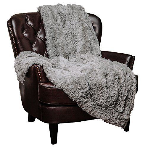 Chanasya Super Soft Shaggy Longfur Throw Blanket | Snuggly Fuzzy Faux Fur Lightweight Warm Elegant Cozy Plush Sherpa Microfiber Blanket | For Couch Bed Chair Photo Props - 60