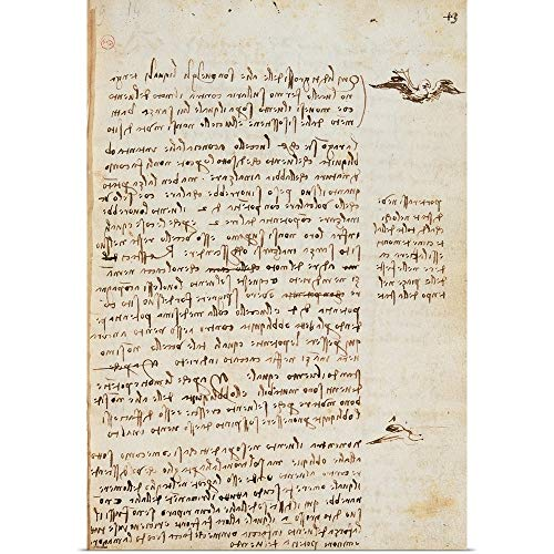 - GREATBIGCANVAS Poster Print Entitled Codex on The Flight of Birds, by Leonardo da Vinci, 1505-1506. Royal Library, Turin by Leonardo da Vinci 12