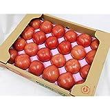 頑張ろう熊本!熊本県産 トマト Lサイズ 約4kg入り 20玉詰め とまと