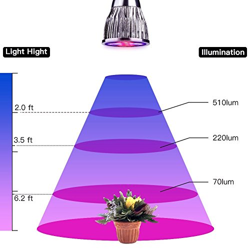 LED Plant Grow Light, 15W Three-Head LED Desk Grow Lamp Adjustable Gooseneck and Three Separate Control Switches for Indoor Plants in Office, Home, Indoor Garden Greenhouse
