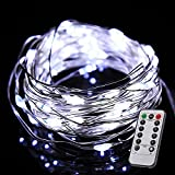 Color Our Life Battery Operated LED String Lights 66 Led's on a Flexible Silver Wire 16.4 Ft 8 Modes with Wireless Remote Control for Christmas, Outdoor, Patio, Garden, Party Decoration (Cool White)