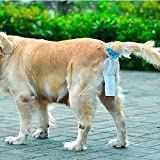 Dog Picking Up, Golden Retriever Dog Pick-Up Teddy Dog Bag, Clip-On Bag, Dog Bag, Garbage Bag