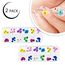 EYX Formula Pack of 2 Set - 12 Colors Natural Dry Flower DIY Nail Design Nail Art Sticker,Lovely Flower Nail Beauty 3D Decoration Tool Nail Sticker for Manicure