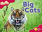 Oxford Reading Tree: Stage 4: More Fireflies A: Big Cats