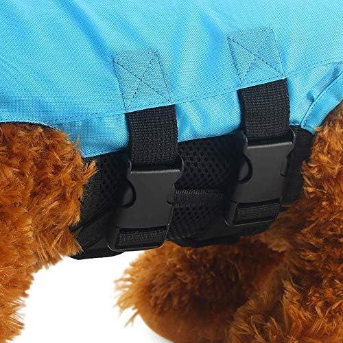 AJMINI Huisdier Leven Jack, Stijlvolle Hond Leven Jack, Waterveiligheid voor Strand, Zwembad, Boating, XL