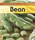 Broad Bean, Angela Royston, 1432925350