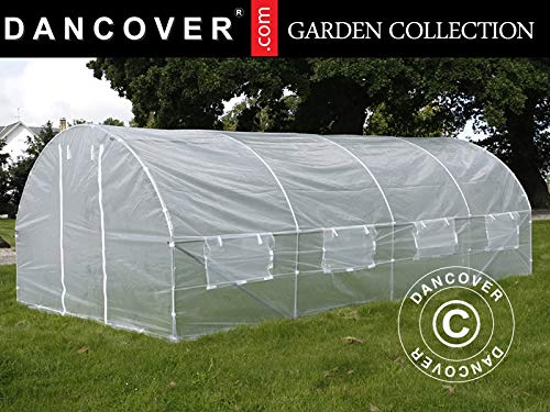 Dancover Polytunnel Greenhouse 3x6x2 m, 18 m², Transparent